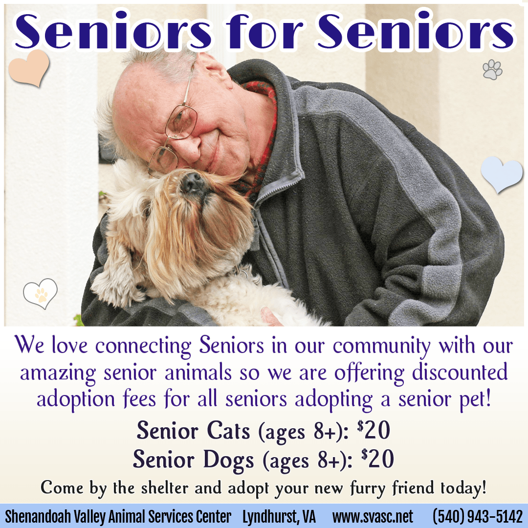 Senior animals for Senior people