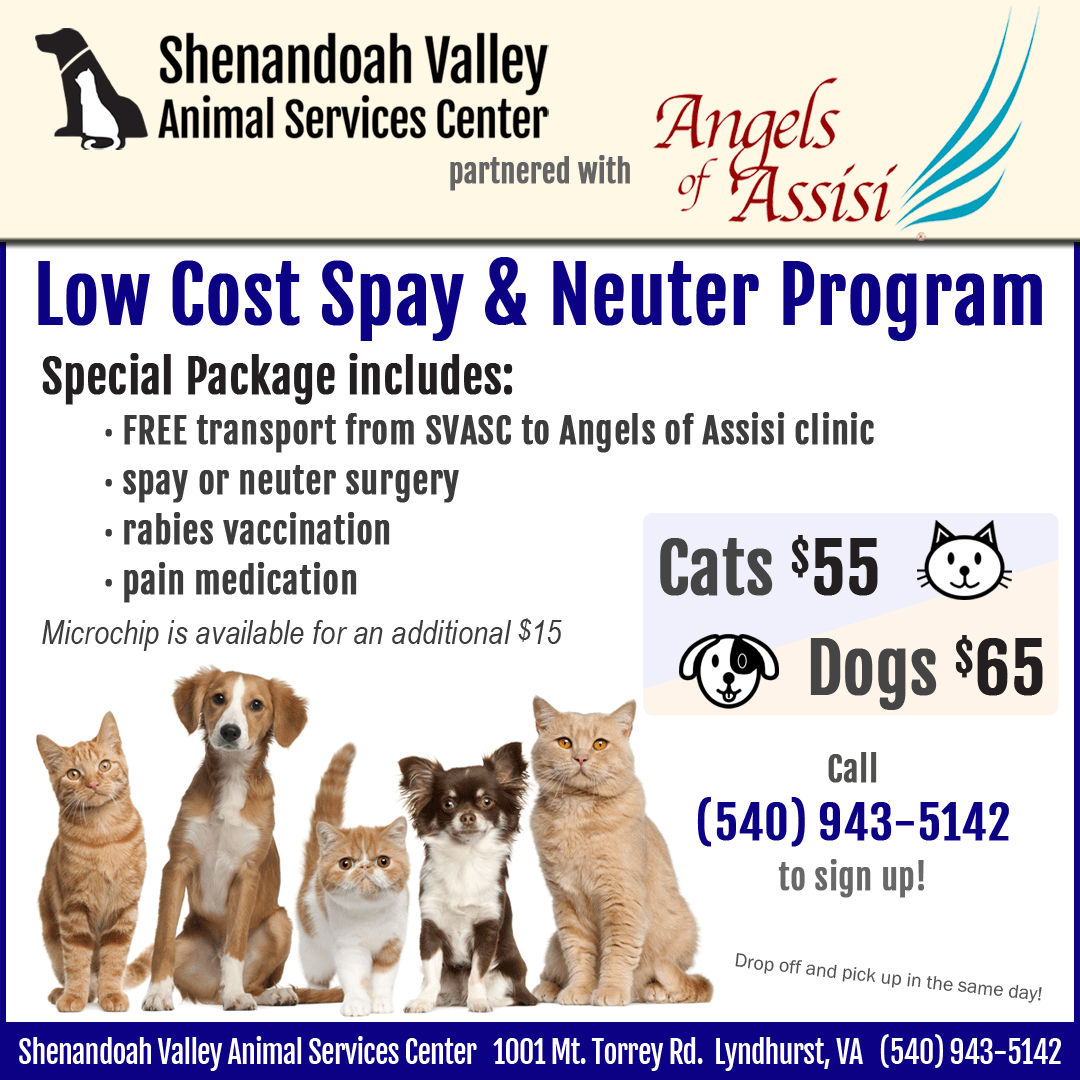 Spay Neuter Clinic $55 for cats and $65 for dogs